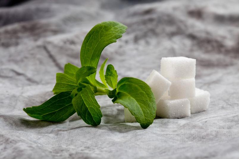 Stevia Powder